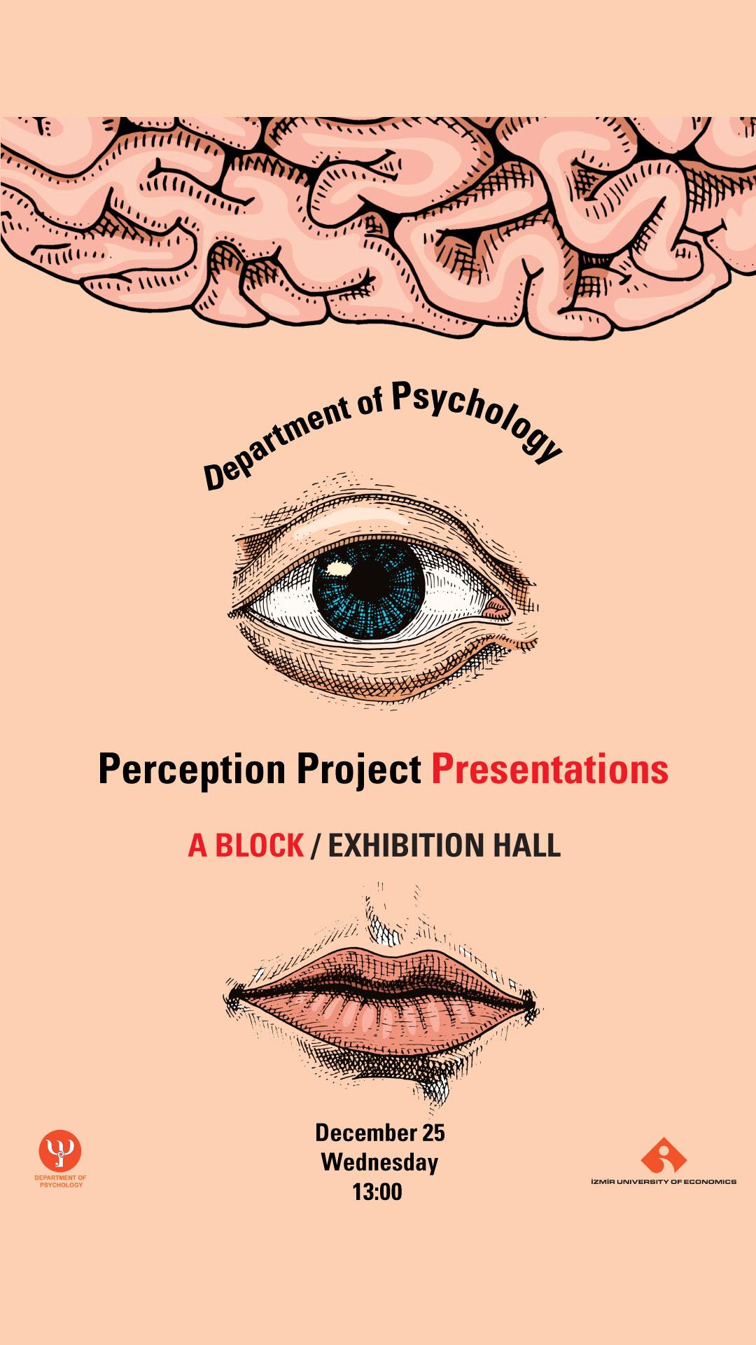 Perception Project Presentation