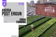 Department of Architecture Webinar Series 2: Andria Post-Ergun