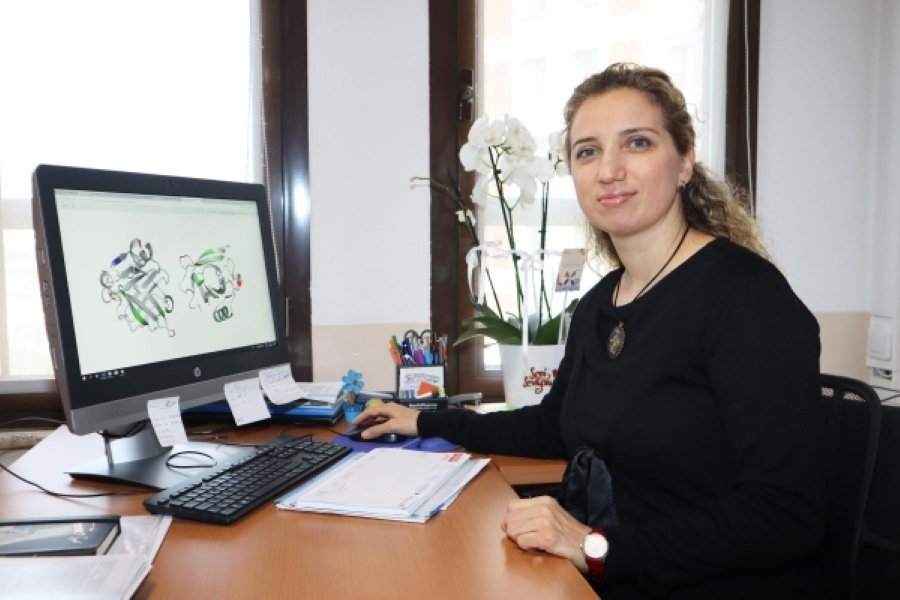 'Protein' project by IUE academic