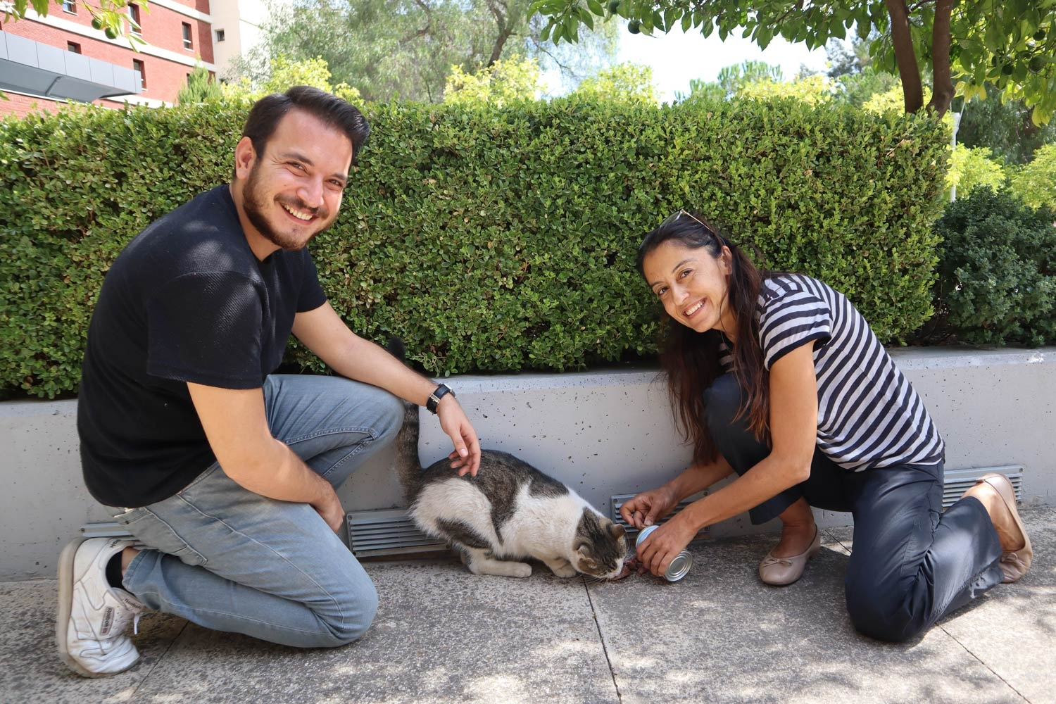 Caring for stray animals on campus