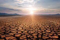 Kuraklığa karşı 'yağmur suyu' hasadı