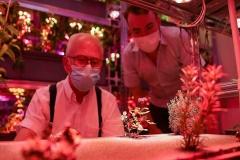 The 'Smart Garden' wins yet another award